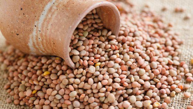 Castelluccio lentils