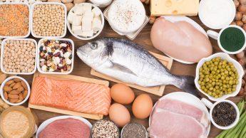 Proteine per i muscoli