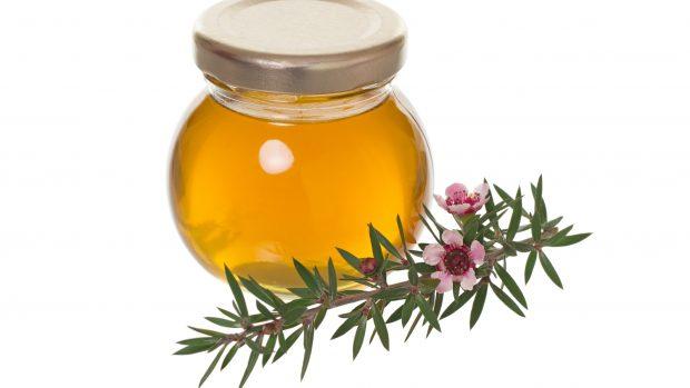 Miele di Manuka: le proprietà antibatteriche del miele amato da Novak Djokovic