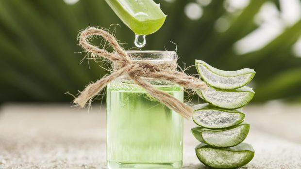 Aloe vera: succo detox ricco di sali minerali perfetto per chi fa sport