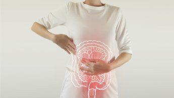 Microbiota, il secondo cervello nell'intestino fondamentale per le difese immunitarie. Ecco come nutrirlo