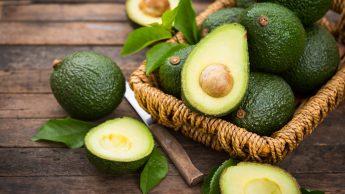 Avocado: il frutto ricco di proteine, grassi buoni e vitamine snack ideale per gli sportivi