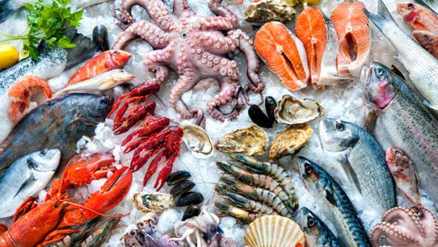 Pesce azzurro, da allevamento, pescato... Quale fa meglio? Risponde la nutrizionista