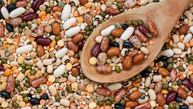 Legumi: proteine vegetali, minerali e fibre che aiutano sportivi e chi è a dieta