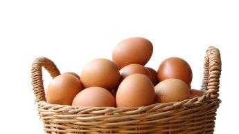 Perché le uova fanno bene e quante mangiarne