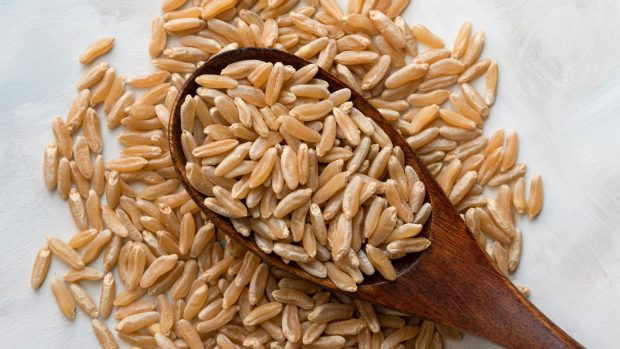 Kamut: cos'è? Contiene glutine? Tutto quello che c'è da sapere su questo grano antico