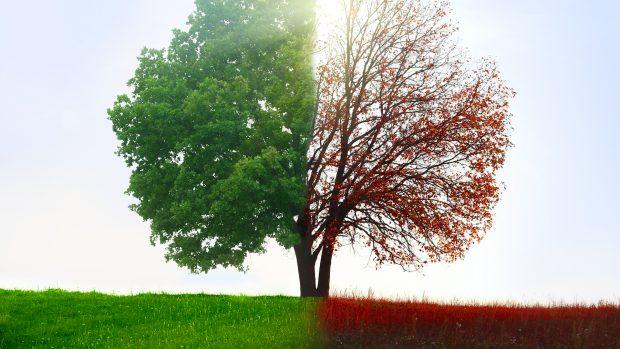 Cambio di stagione, combattere i sintomi in 4 mosse, partendo dall'intestino